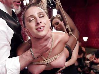 busty ashley got tied up