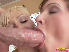 PervCity Romanian Blowsandwich Threesome