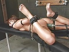 bondage and fucking machines (holly wellin) -14