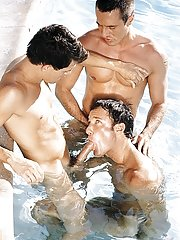 Peter Wilder::David Bradley::Spike in Gay XXX Pictures