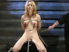 Scorching Hot Lily Luvs Is Tied...